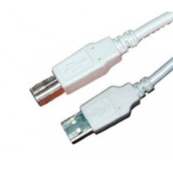 CORDON USB2 A MALE / B MALE 5m