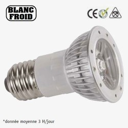 LAMPE E27 50mm 230V 1 LED BLANCHE 1W